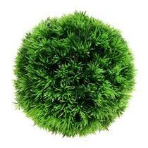 Plant ball og baller