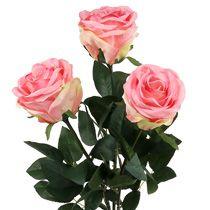 Skumrose & dekorative roser