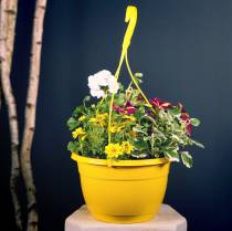 Blomster trafikklys 25cm hvit