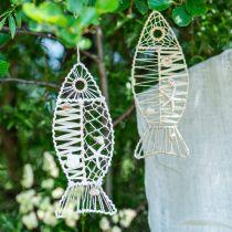 Maritim fiskedekorasjon med flettverk og skjell, dekorasjon henger fisk form natur 38cm