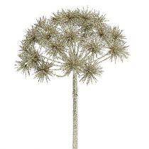 Allium med glimmerchampagne Ø18cm L70cm