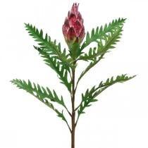 Artisjokk Artisjokk Rosa Kunstige Planter Deco Høst H68cm