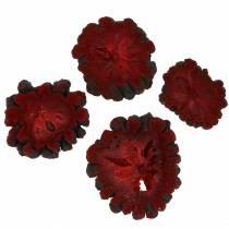 Dekorative fruktskiver Ata frukt rød 1kg