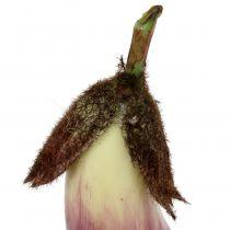 Aubergine 18,5 cm fiolett