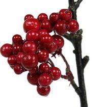 Bærgrein rød 50cm 4stk