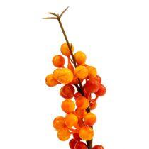 Bærgrein oransje L 30cm 12stk
