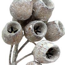 Bellgum kvist 5-7 hvitvasket 20stk
