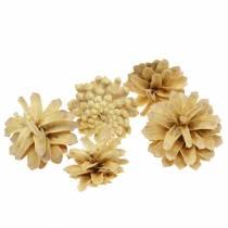 Fjellkegler Pinus mugo krem 2-5cm 1kg