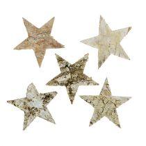 Bjørkestjerner 6cm 100p