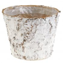 Dekorativ gryte hvitkalket bjørk Ø18cm H15cm