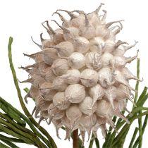Blossom gren skumgrå / grønn 65cm