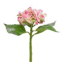 Hortensia rosa snødde 33cm 4stk