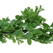 Buksbomkransgrønn 180cm