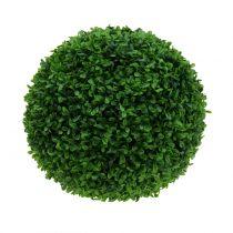 Boxwood ball grønn Ø30cm