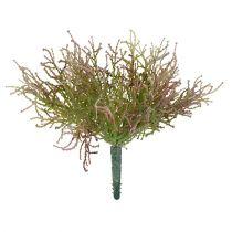 Calocephalus rosa / grønn 21,5 cm