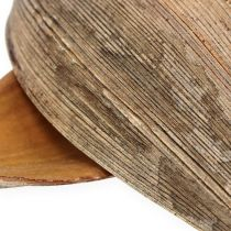 Kokosnøtt skall kokosnøtt blad naturlig 25p