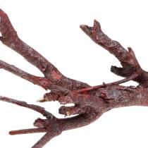 Dekoast karrybusk rødvasket 500g
