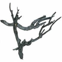 Dekoast karrybusk svartvasket 500g
