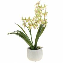 Orchid Cymbidium Green i en gryte Kunstig H46cm