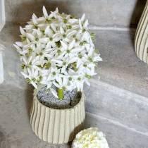 Dekorativ blomst Allium, kunstig kule purre, prydløk hvit Ø20cm L72cm