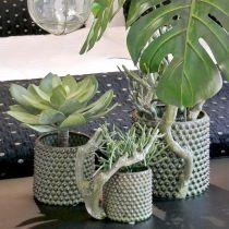 Dekorativ sukkulent plante kunstig grønn Ø30cm H27cm