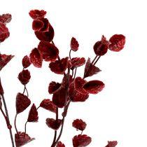Dekorativ gren mørk rød 74cm 6stk