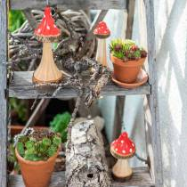 Dekorative paddehatter laget av tre rød, naturlig 13,5 cm - 19 cm 3 stk
