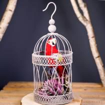 Dekorativ papegøye rød 44cm