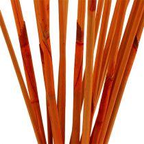 Dekorative pinner Elephant Reed Orange 20stk