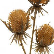 Tistelgren brun kunstig plante høstdekorasjon 38cm