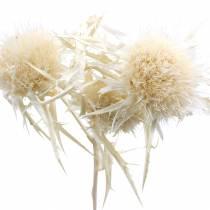 Tørket blomstertistelkvist Bleket 80g