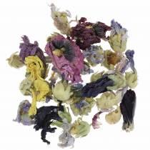 Tørr dekorasjon håndverkssett Echter Eibisch Natur 300g blomsterpotte