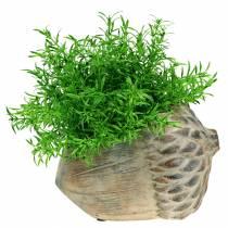 Planter betong eikenøtt 21,5cm × 14cm H9,5cm