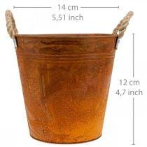 Plantegryte, høstdekorasjon, metallkar med patina Ø14cm H12cm