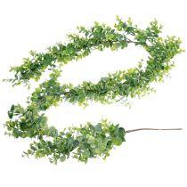 Eucalyptus kransgrønn 150cm