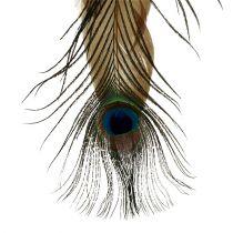 Fjærhenger påfuglfjær 34cm 3stk