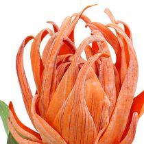 Skumblomstring oransje 12cm L30cm 1p