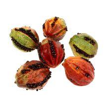 Høstfrukt 3,5 cm rød, brun 24 stk