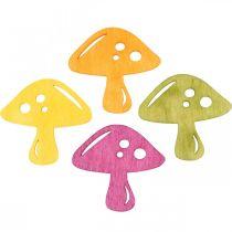 Spredt sopp, høstpynt, heldige sopp for å dekorere oransje, gul, grønn, rosa H3,5 / 4cm B4 / 3cm 72stk.