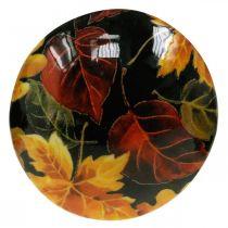 Soppdekorasjon av tre fargerike blader høstdekorasjon svart, fargerik Ø13cm H19cm