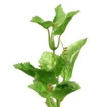 Humlegren 70cm grønn 2stk