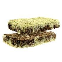 Moss reinrein finsk Extra Polar 2 tallerkener