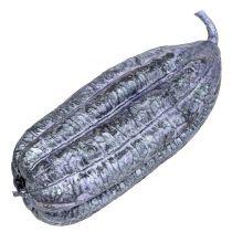 Luffa fruktfiolett 14cm - 20cm 10stk