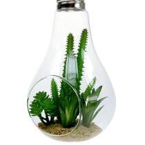 Kaktus i et glass for å henge 21cm