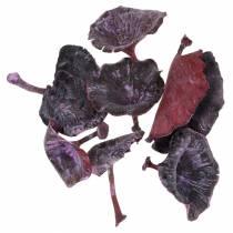 Kalix sopp lilla, hvitvasket 100stk
