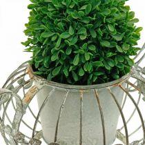 Planter, dekorativ kaffekanne, metallkanne for planting L15,5cm Ø11,8cm