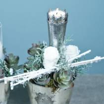 Konserverte roser medium Ø4-4,5cm hvit 8stk