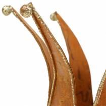 Krone Edelrost Gull Ø6,5 / 8,5 cm 2stk i et sett
