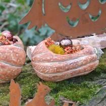 Gresskar for planting Orange 28 × 15 × 14cm