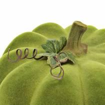 Dekorativ gresskar flokket mosegrønn 32cm